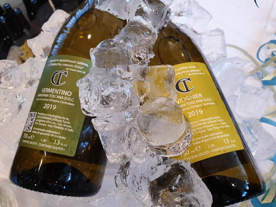 vini toscani 2019 cacciagrande